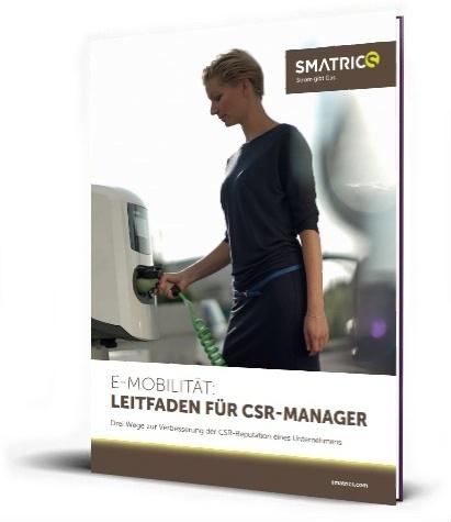 3D cover Leitfaden CSR Manager-370217-edited